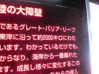 DSC00598.JPG